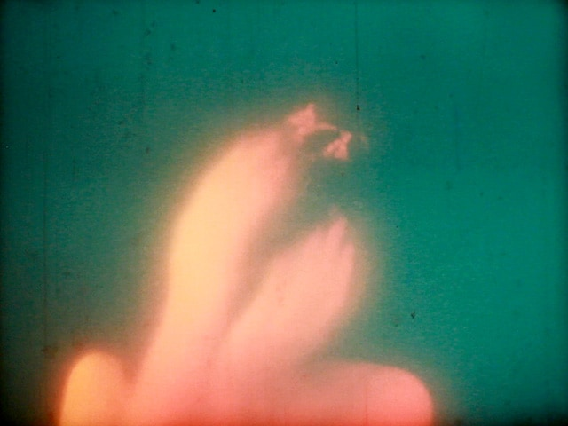 pedro maia, plant in my head, film, work, tropic of cancer